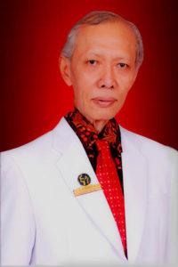 Prof. Dr. Widodo Ario Kentjono, dr., Sp.T.H.T.K.L (K), FICS